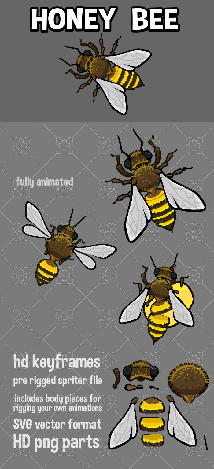 Animated honey bee top down game sprite