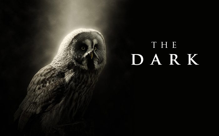Eerie Piano Music – The Dark