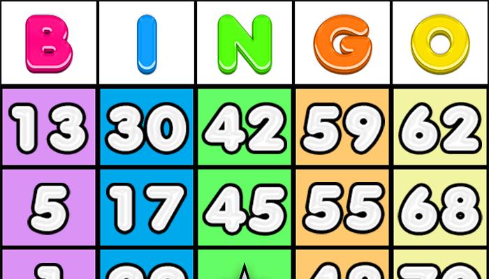 Bingo Set 2