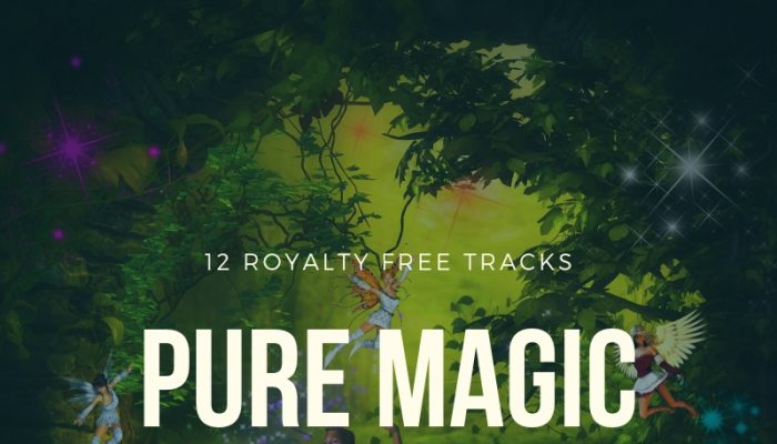 Pure 8-bit Magic (12 Royalty Free Tracks)