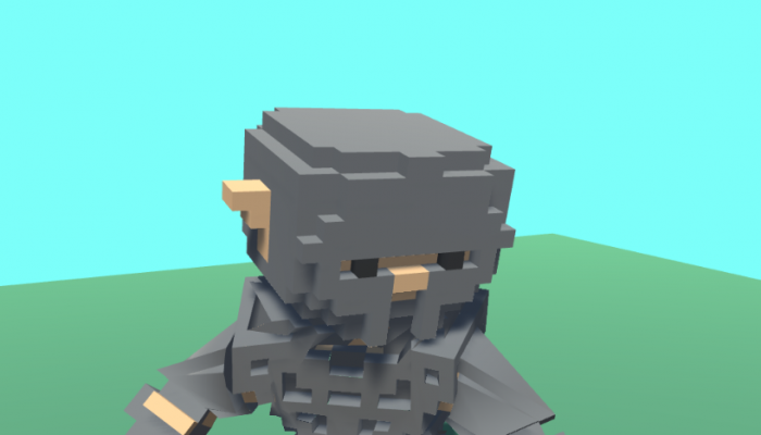 Voxel Knight