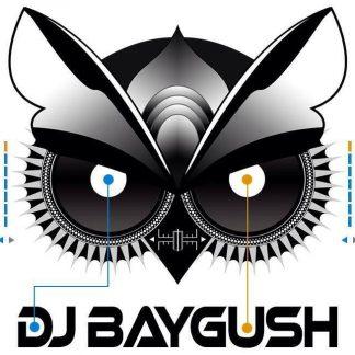 Baygush