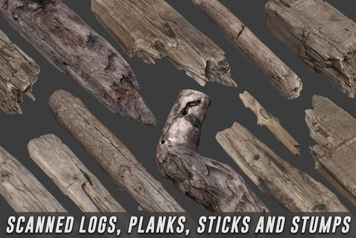 Scanned Logs, Planks, Sticks and Stumps