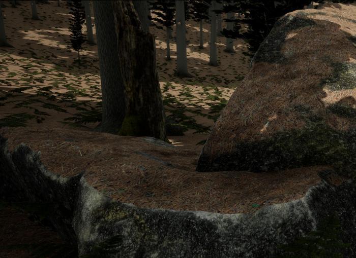 Forest Floor — Pine Needles