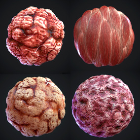 """flesh"" pack of 7 PBR materials"