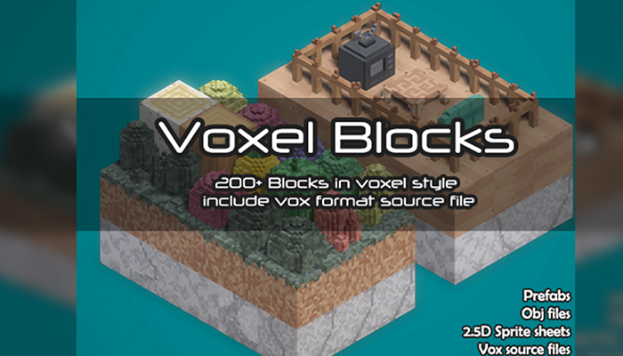 Voxel Blocks