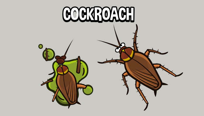 Animated cockroach