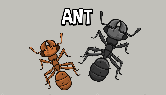Animated top down ant game asset