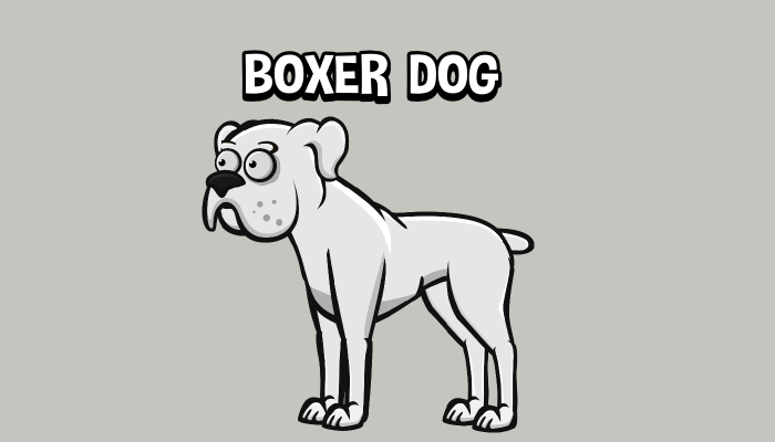 Animated boxer