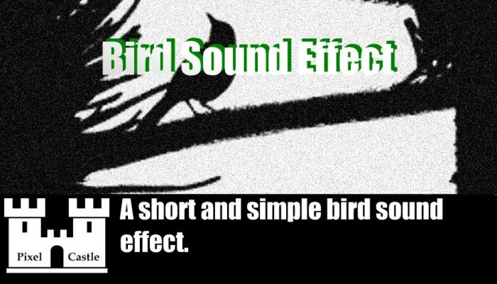 Bird Sound SFX
