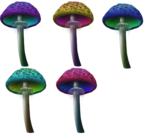 Mushroom Object Background