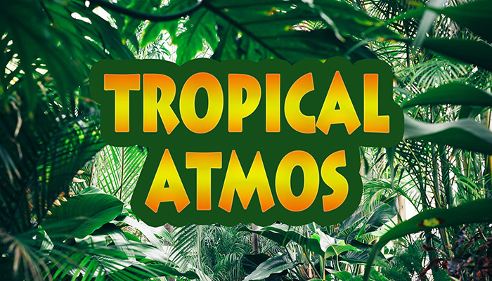 Tropical Atmos