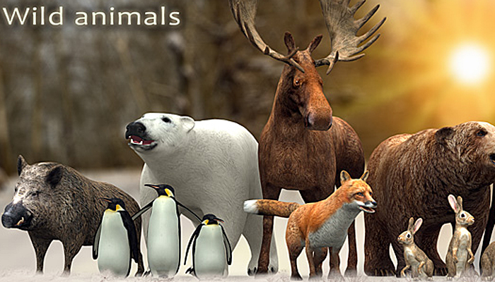 3DRT – Wild Animals Pack