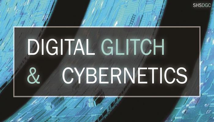 Digital Glitch and Cybernetics