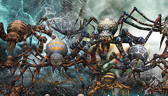 3DRT – Spiders