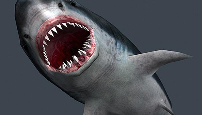 3DRT – Shark Jaws pack
