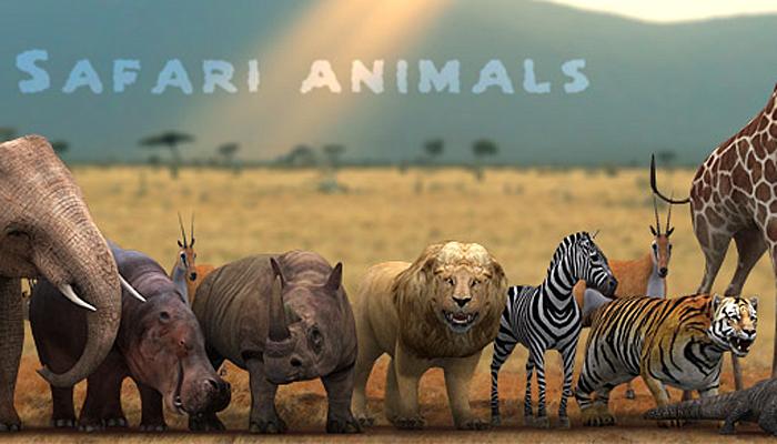 3DRT – Safari Animals