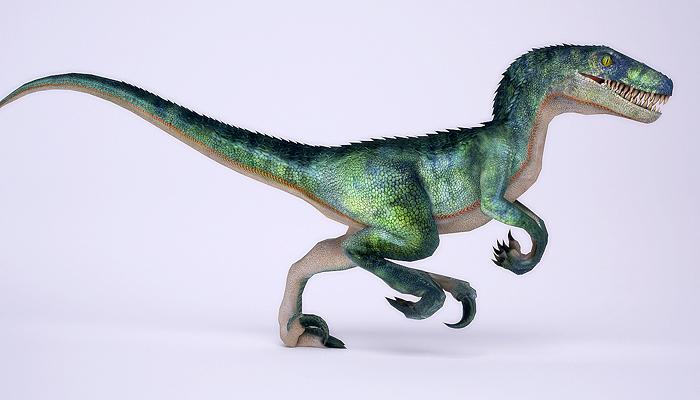 3DFoin – Raptor