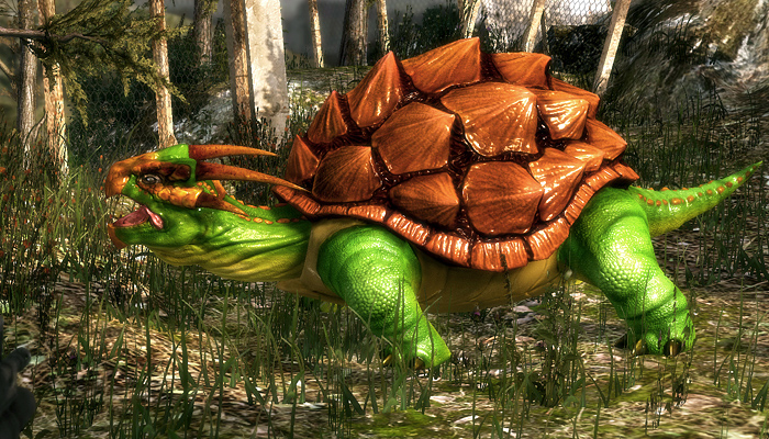 3Dfoin – Dragon Turtle