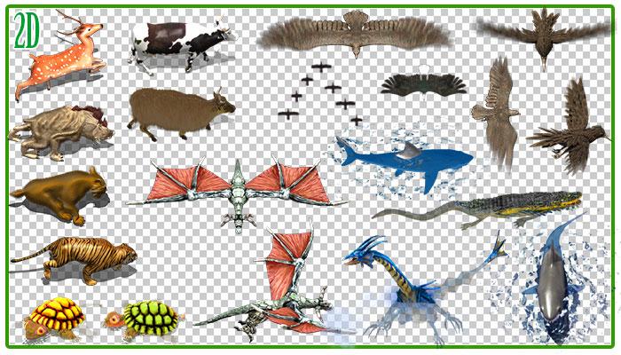 2D Animated Animals