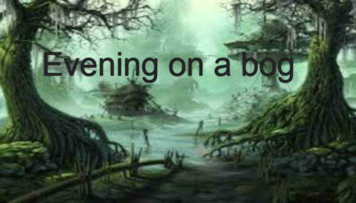 Evening on a bog