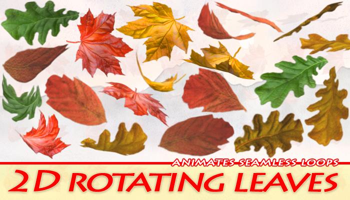 2D Leaves