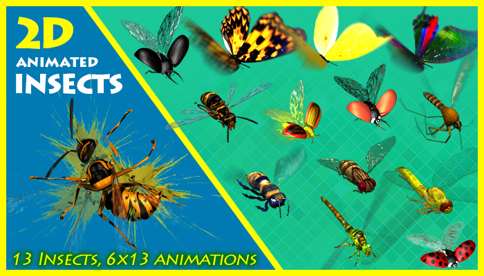 Animated Insects
