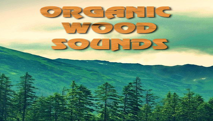 Organic Wood Sounds