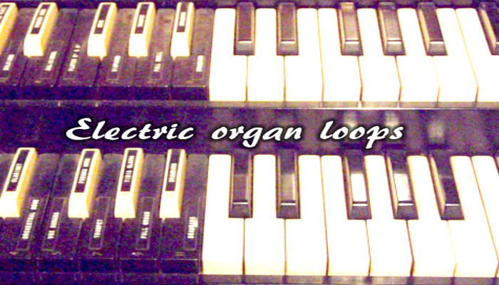 The organ party