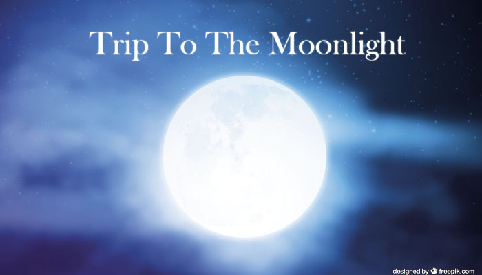 Trip To The Moonlight