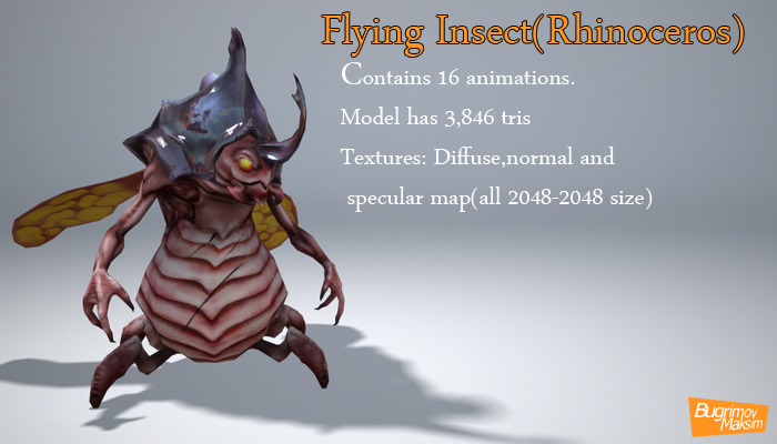 Flying Insect Rhinoceros