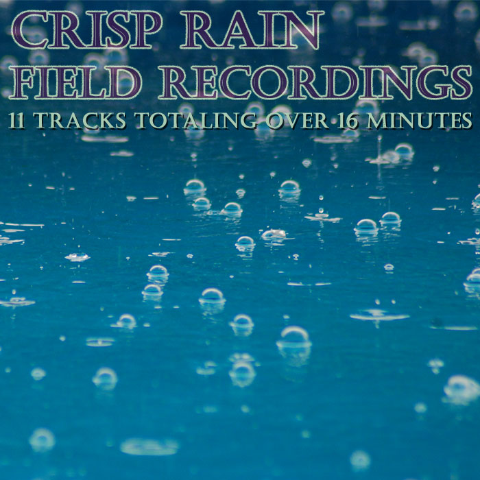 Crisp Rain Field Recordings