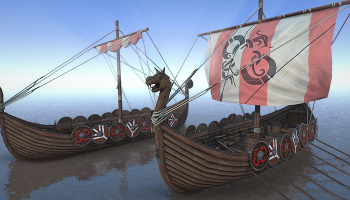 Medieval Viking Ships