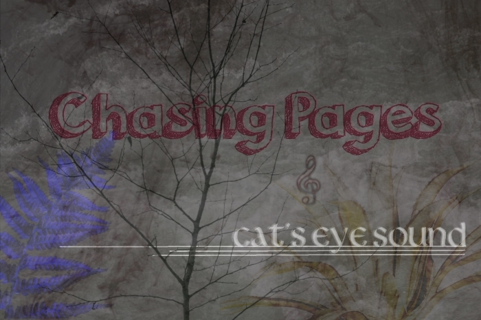 Chasing Pages