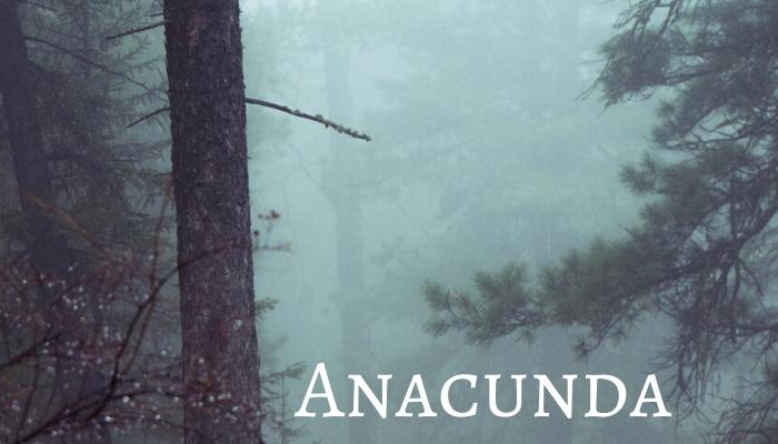 Anacunda