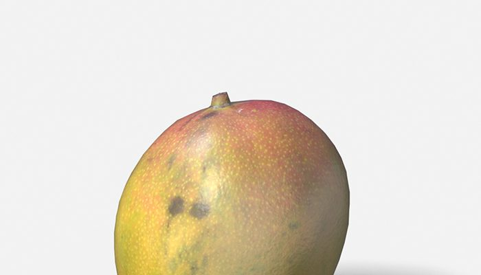 Exotic Fruit Mango – Photoscanned PBR