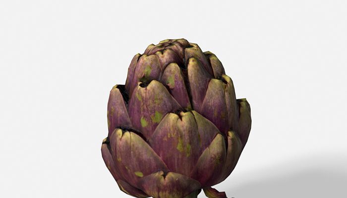 Vegetable Artichoke – Photoscanned PBR