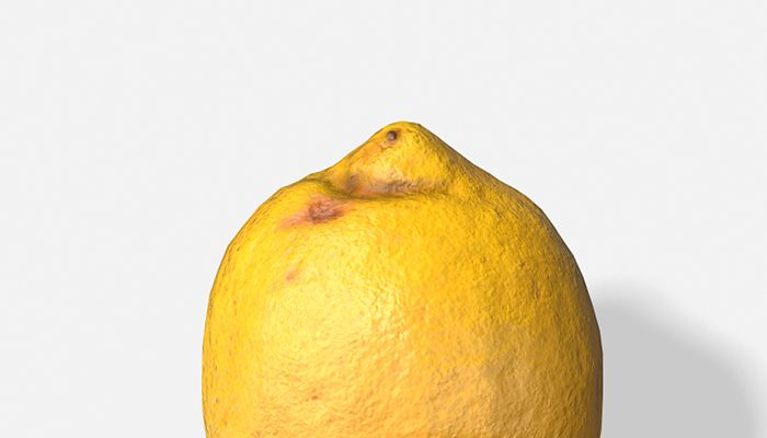 Fruit Lemon – Photoscanned PBR