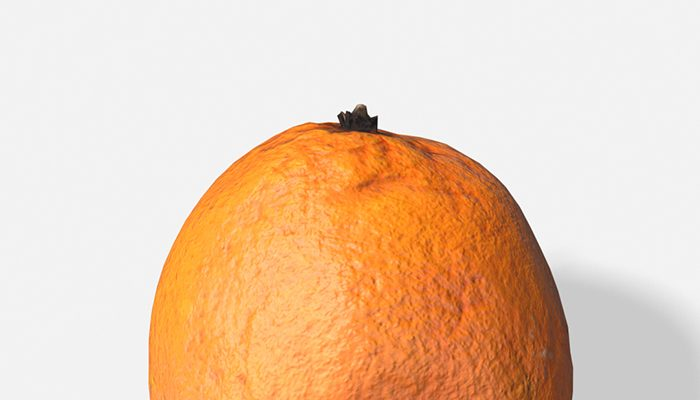 Fruit Orange – Photoscanned PBR