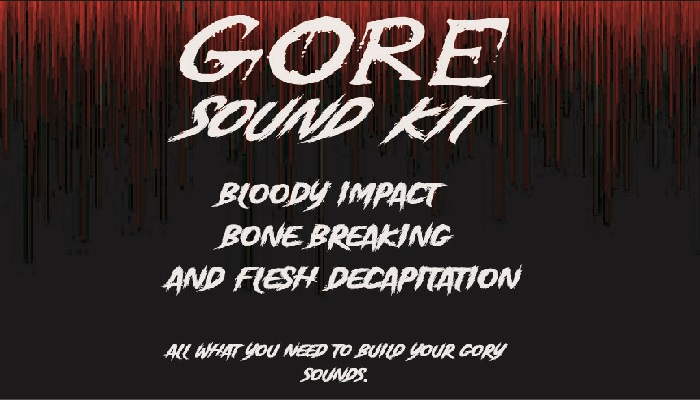 GORE Sound kit