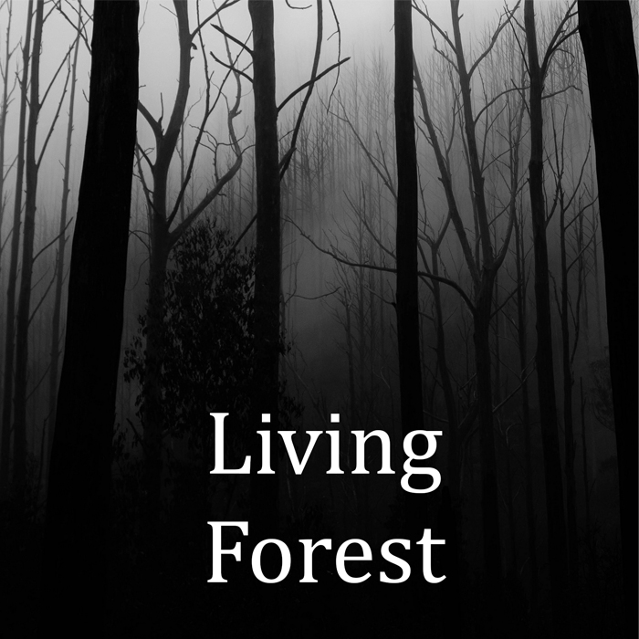Living forest mystic ambient theme