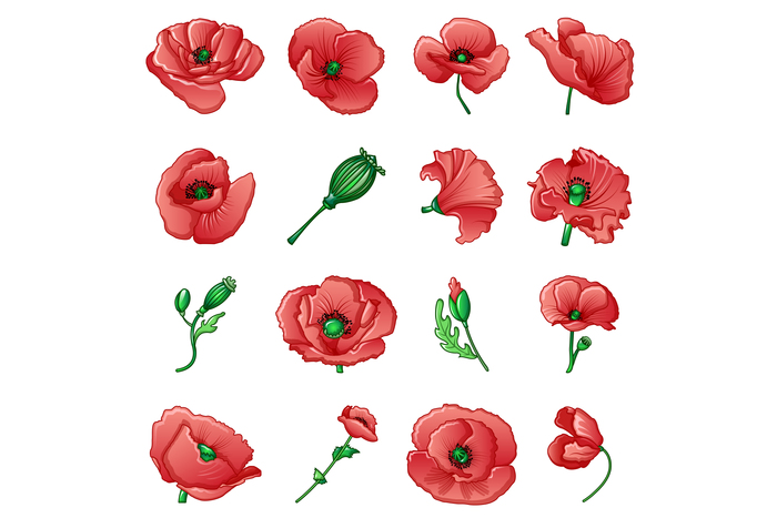 Poppy remembrance day icons set, cartoon style