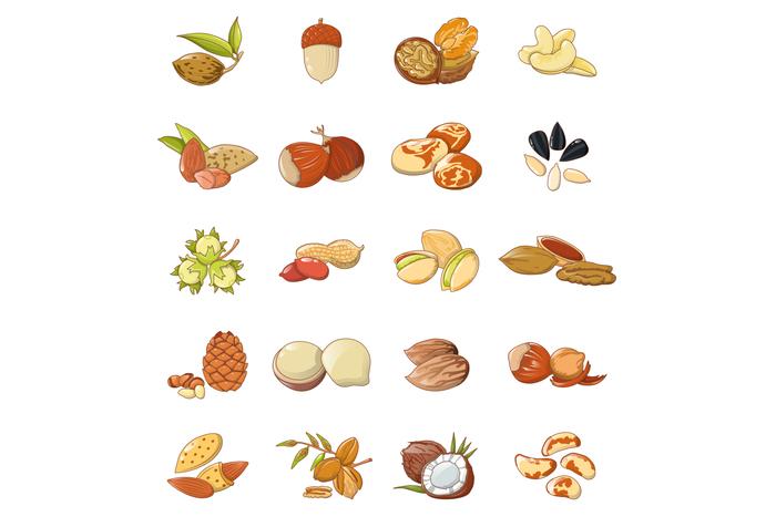 Nut types food icons set, cartoon style