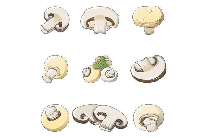 Champignon mushroom icons set, cartoon style