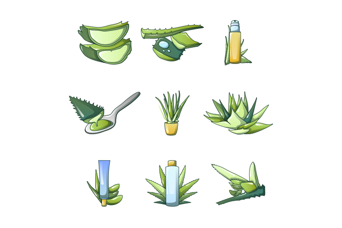 Aloe vera icon set, cartoon style