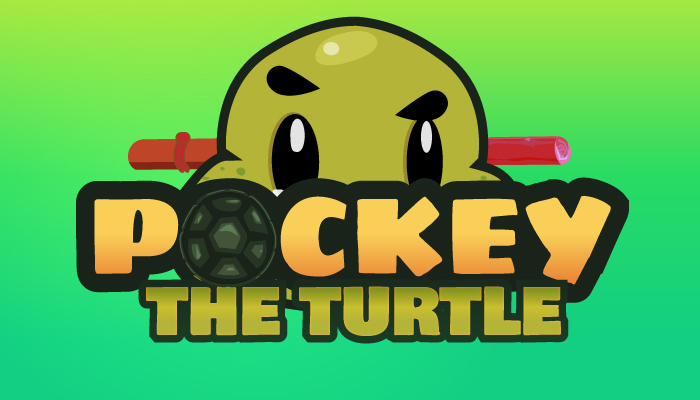 Pockey The Turtle 2D Character Sprites