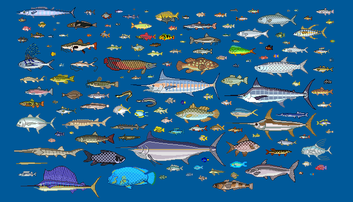 Pixel Art 160 Proportional Fishes