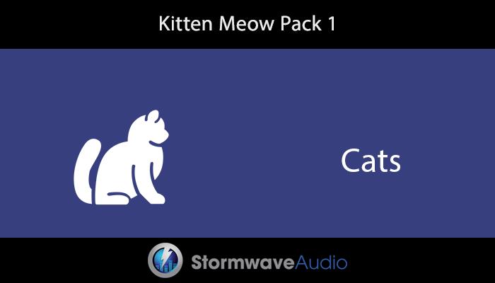 Kitten Meow Pack 1