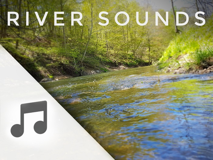 River Flowing Sounds