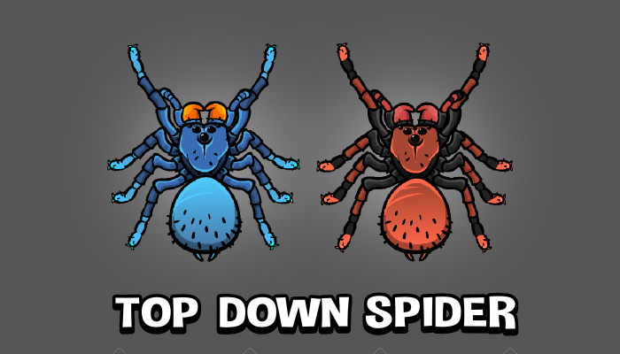 Top down spider